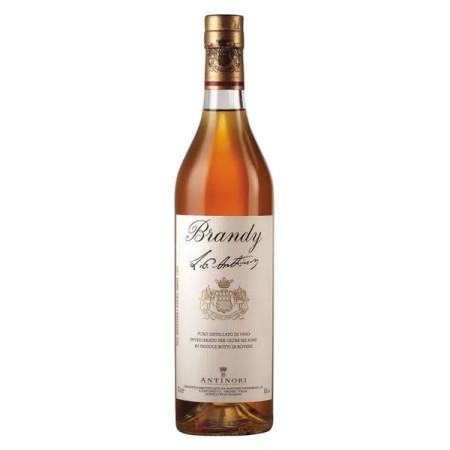 Brandy Antinori